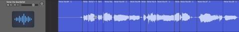 Detailliertes Clip Gain einer Vocal Aufnahme